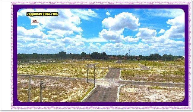 Lotes Terras Horizonte - Construção Liberada-&#$ - Foto 7