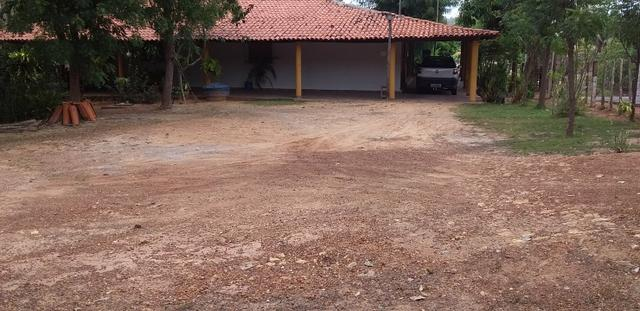 Vendo Sitio no Povoado Felicidade Municipio de Jose de Freitas - Foto 2