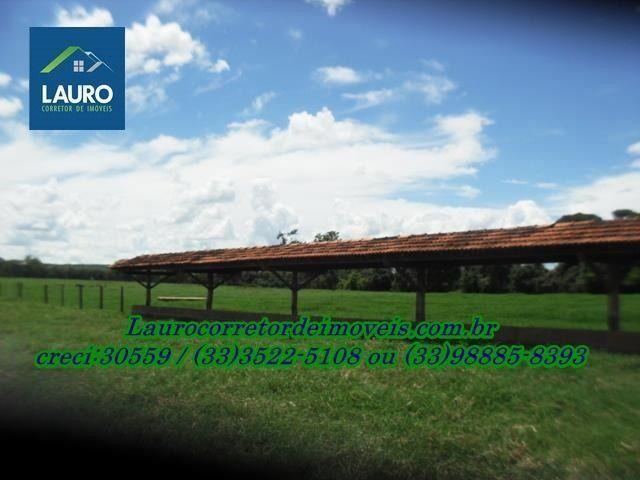Fazenda com 1.000 hectares na Região de Curvelo-MG - Foto 7