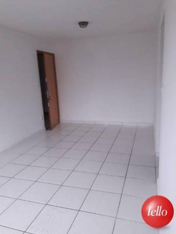 Apartamento para alugar com 2 dormitórios em Tucuruvi, São paulo cod:214139