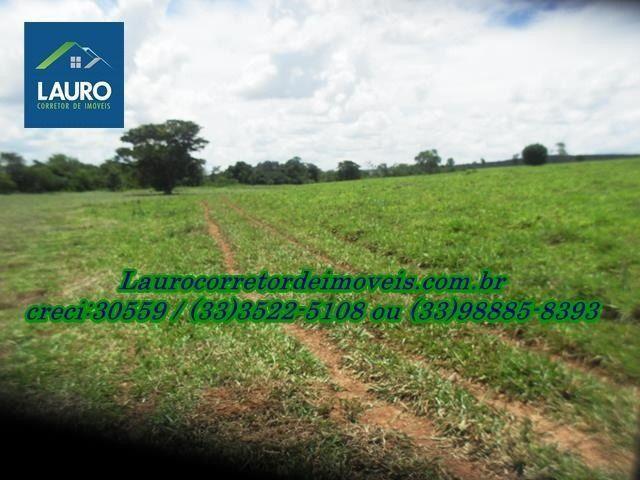 Fazenda com 1.000 hectares na Região de Curvelo-MG - Foto 11
