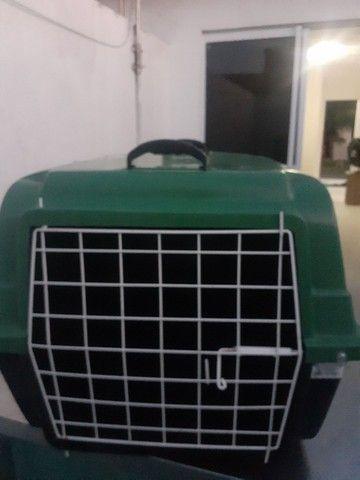 Caixa de transporte semi nova cachorro