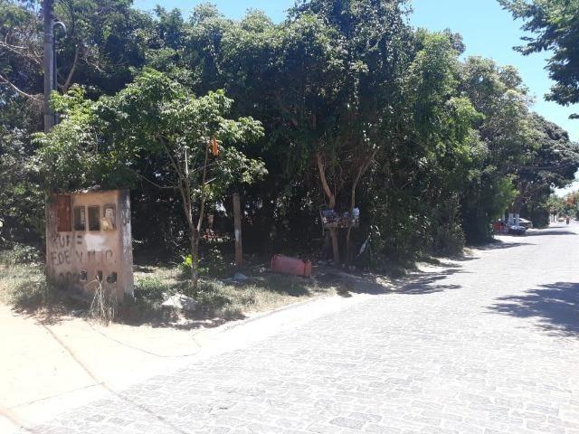 Jô - Lote em Tucuns - 432m² - Foto 3
