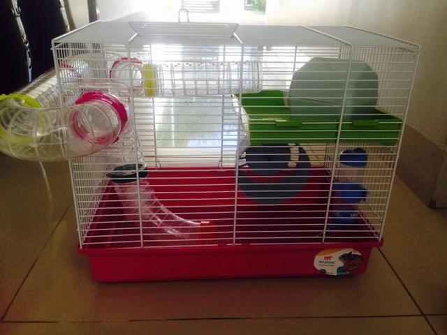 Gaiola para Hamster - Não aceito menos