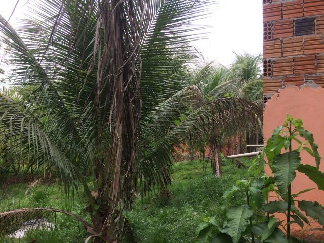 Vende-se chácara no bairro Floresta - Foto 6