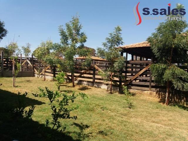 Chácara à venda com 4 dormitórios em São romão, São romão cod:FA00003 - Foto 14