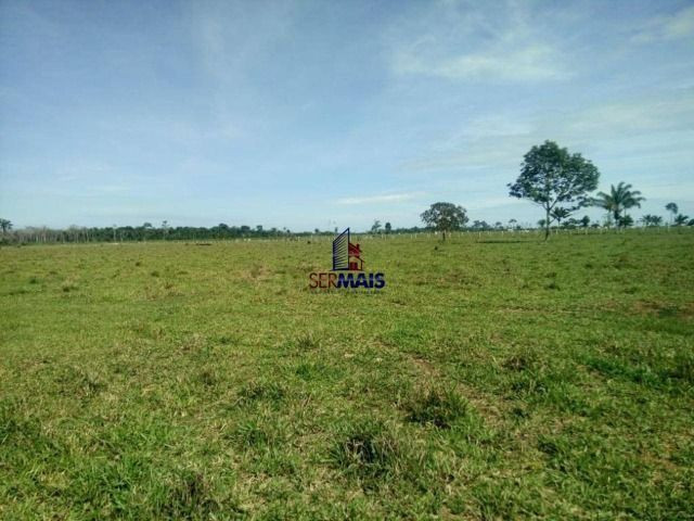 Fazenda à venda, por R$ 3.888.000 - Zona Rural - São Francisco do Guaporé/RO - Foto 4