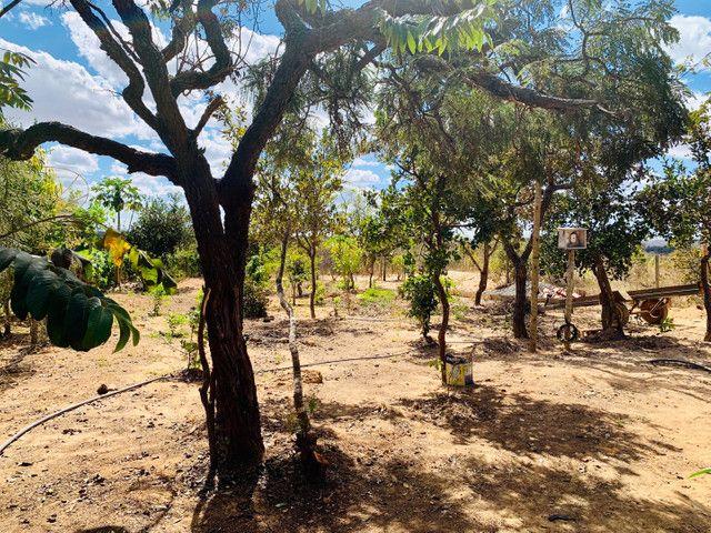 Vendo Rancho 2 quartos um suíte regiao Três Marias - Foto 4