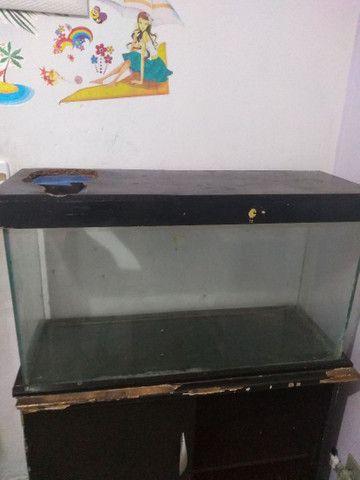 Aquário para peixes mais cômoda gratis  - Foto 3