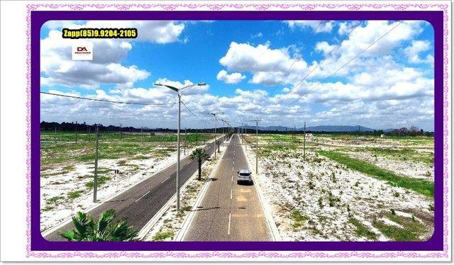 Lotes Terras Horizonte - Construção Liberada-&#$ - Foto 14