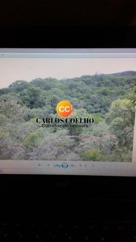 Jo - Área no Vale das Videiras em Petrópolis - 226.000 m² - Foto 5