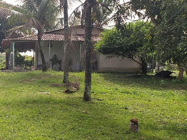9 hectares nas Margens da BR 232 a 25 km de Recife PE - Foto 15