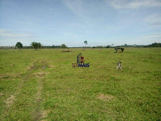 Fazenda à venda, por R$ 3.888.000 - Zona Rural - São Francisco do Guaporé/RO - Foto 3