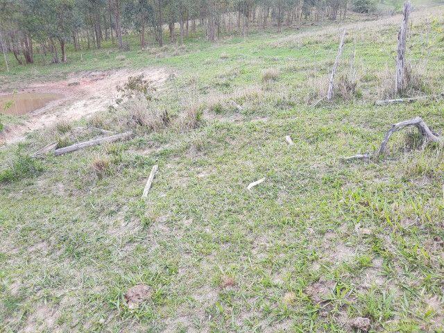 Fazenda em capetinga 92 alqueires 5.000.000.00 - Foto 8
