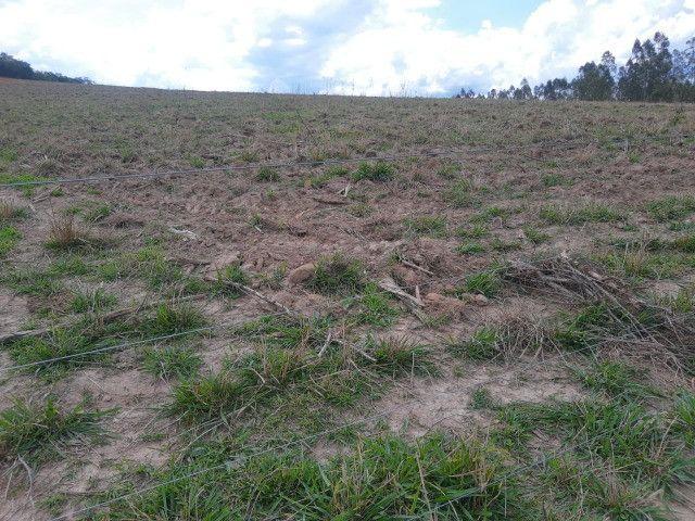 Fazenda em capetinga 92 alqueires 5.000.000.00 - Foto 2