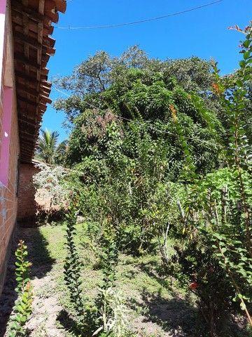 Vendo um sítio em Boa Vista. Curuça.55.000 - Foto 9