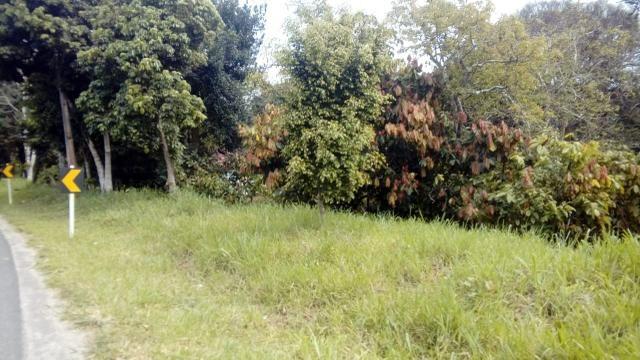 Terreno Rodovia Itabuna- Ilhéus - Foto 11