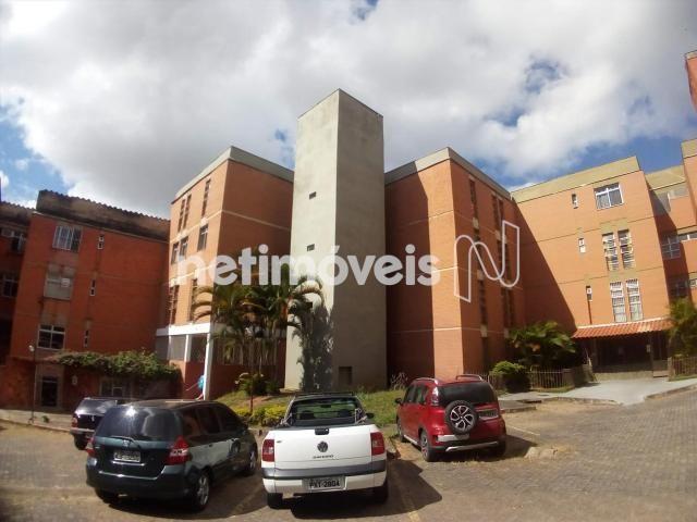 Apartamento à venda com 3 dormitórios em Estrela dalva, Belo horizonte cod:755311