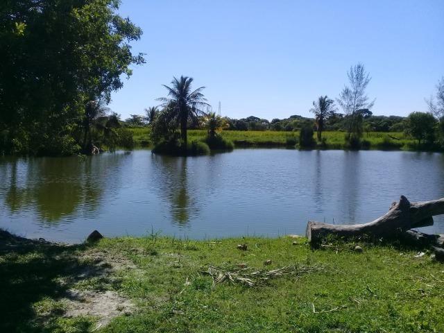 L-Loteamento Localizado a 500m da Rodovia Amaral Peixoto em Unamar - Tamoios - Cabo Frio! - Foto 4