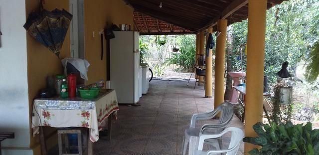 Vendo Sitio no Povoado Felicidade Municipio de Jose de Freitas - Foto 5