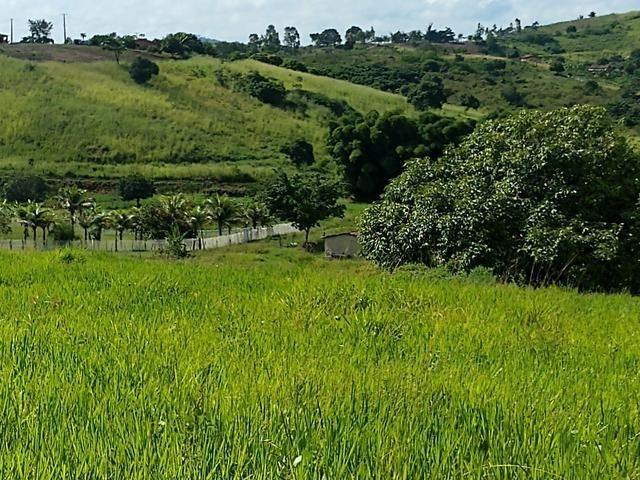 9 hectares nas Margens da BR 232 a 25 km de Recife PE - Foto 10