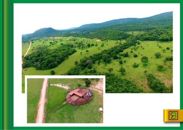 Fazenda em Cáceres - Foto 4