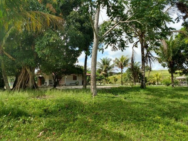 9 hectares nas Margens da BR 232 a 25 km de Recife PE - Foto 14