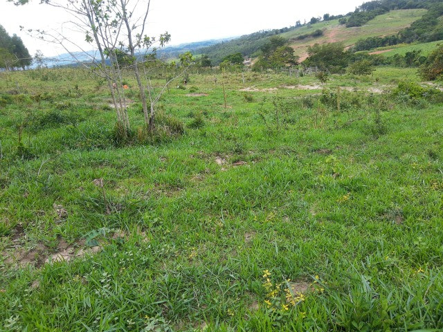 Fazenda em capetinga 92 alqueires 5.000.000.00 - Foto 16