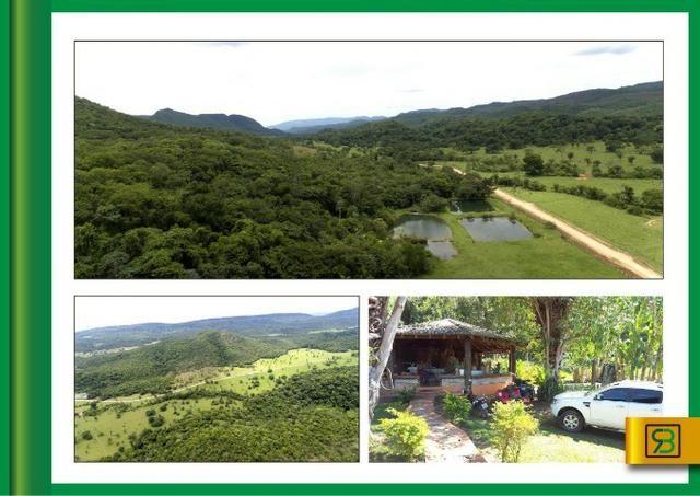 Fazenda em Cáceres - Foto 2