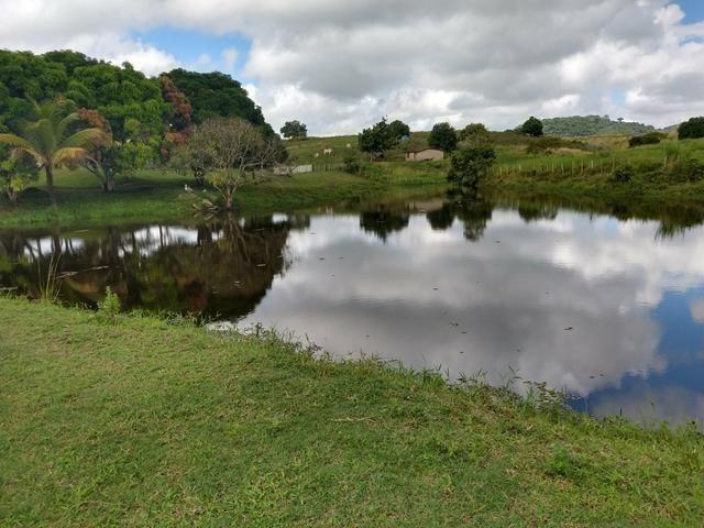 9 hectares nas Margens da BR 232 a 25 km de Recife PE