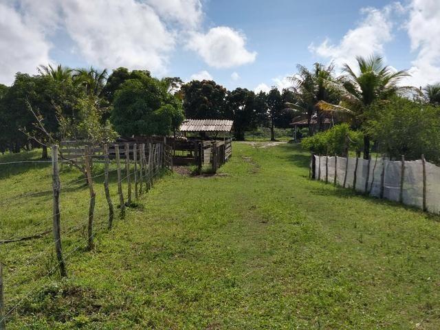 9 hectares nas Margens da BR 232 a 25 km de Recife PE - Foto 13