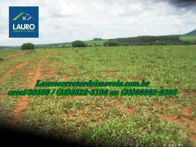 Fazenda com 1.000 hectares na Região de Curvelo-MG - Foto 6