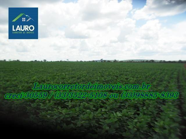 Fazenda com 1.000 hectares na Região de Curvelo-MG - Foto 4