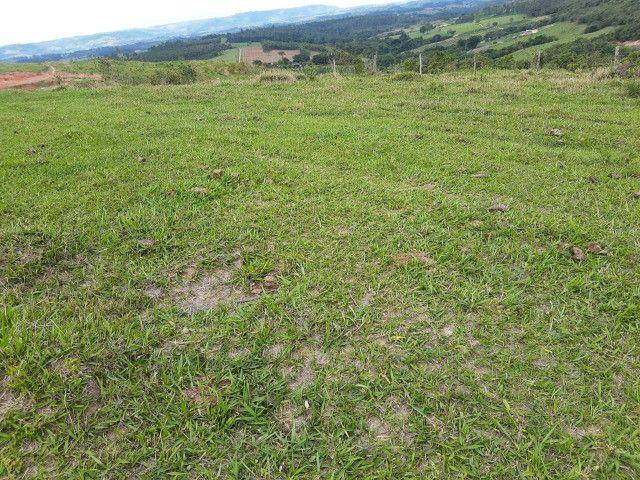 Fazenda em capetinga 92 alqueires 5.000.000.00 - Foto 6