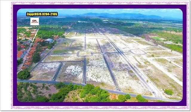 Lotes Terras Horizonte - Construção Liberada-&#$ - Foto 17