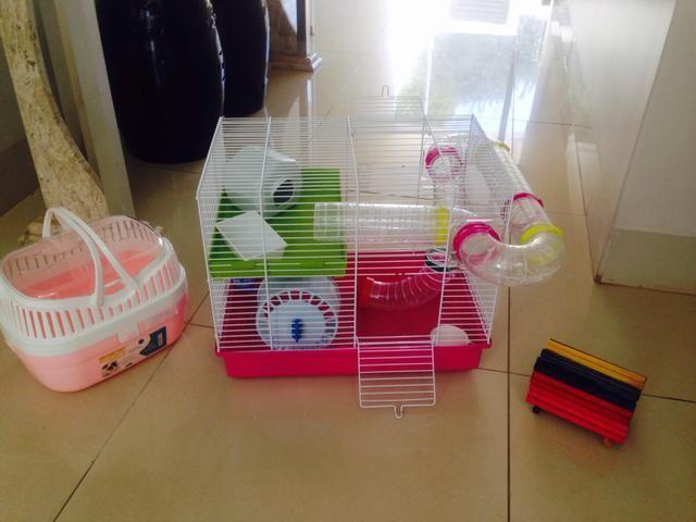 Gaiola para Hamster - Não aceito menos - Foto 2