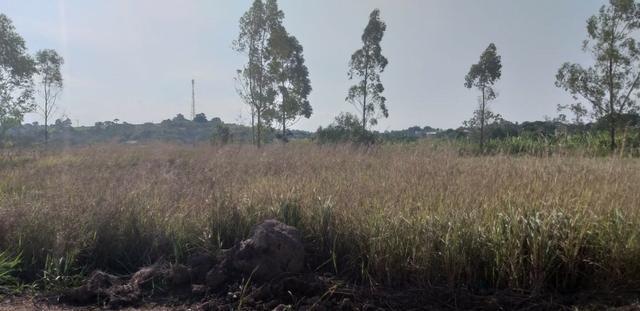 Bon: 2257 Terreno totalmente legalizado em Bicuíba - Saquarema - Foto 2