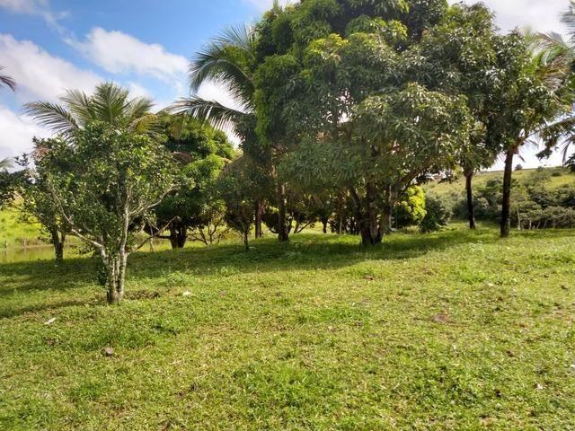 9 hectares nas Margens da BR 232 a 25 km de Recife PE - Foto 2