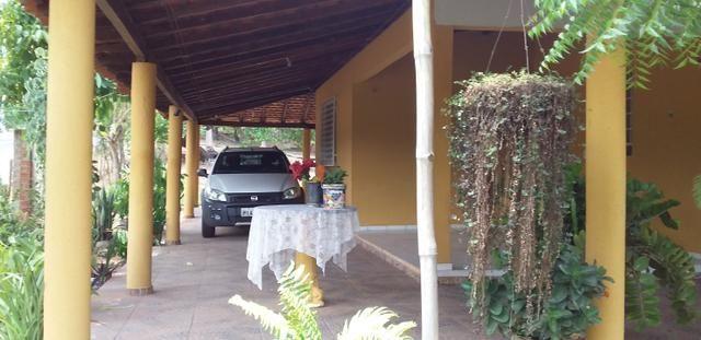 Vendo Sitio no Povoado Felicidade Municipio de Jose de Freitas - Foto 4