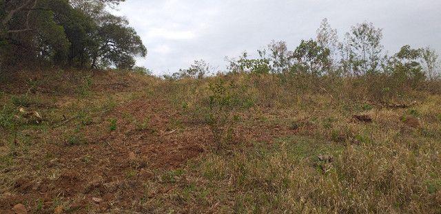 3 alqueires de terra minas gerais - Foto 3