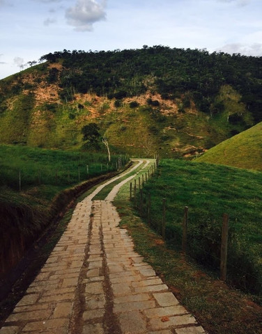 Sitio próximo à Secretario (caminho Sebollas) - Foto 4