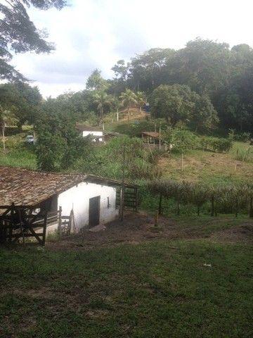 Fazenda-Granja-Sítio 5,5 Hectares c/Riacho Perene na Guabiraba, Aceito Automóvel - Foto 12