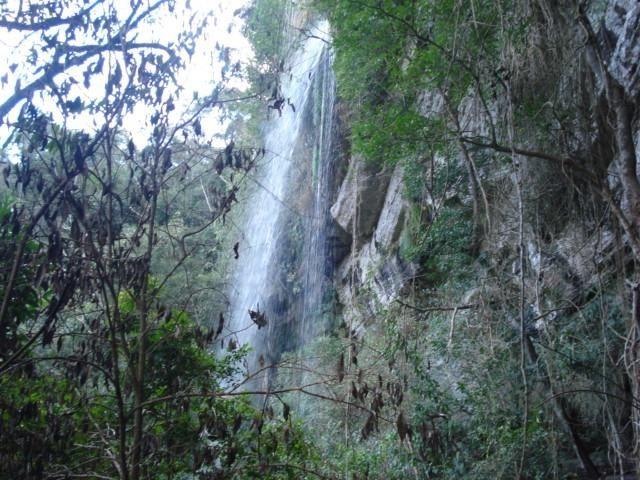 Alfredo Wagner , Serra Catarinense 8,0 hectares