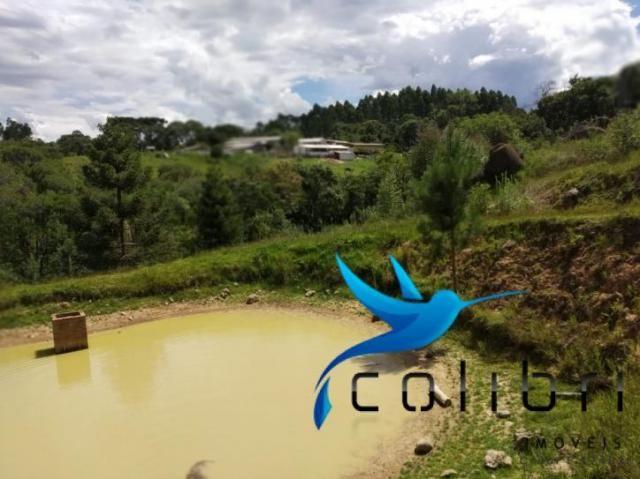 Chácara pronta para criação de gado em mandirituba - Foto 15