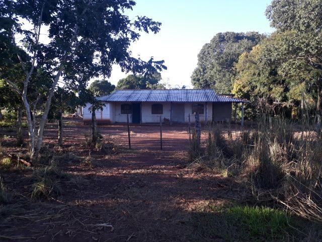 Chácara de terra boa a 9 km de Acorizal - Foto 15