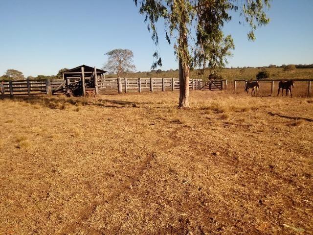 Fazenda com 1.940 hectares na estrada do manso ha 45 km de Cuiabá - Foto 18