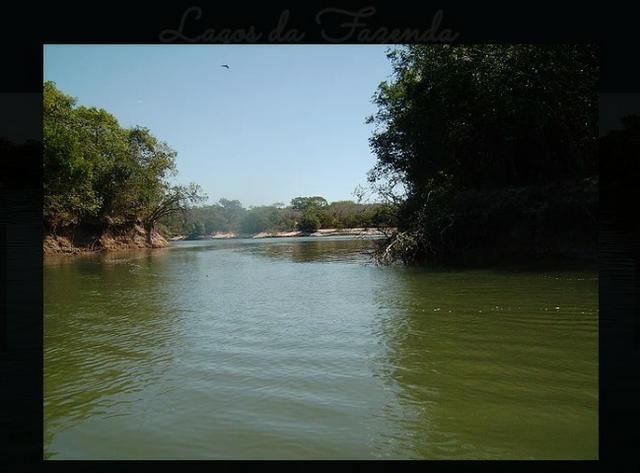 Vendo uma fazenda de 10.257 hectares, em Cocalinho- mt - Foto 10