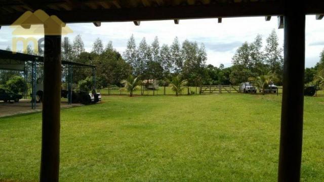 Sítio com 1 dormitório à venda, 96800 m² por R$ 590.000,00 - Zona Rural - Martinópolis/SP - Foto 11