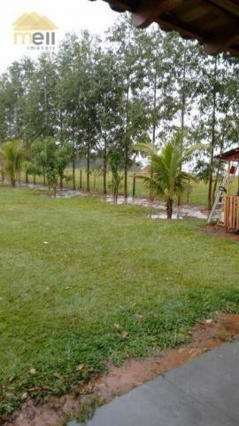 Sítio com 1 dormitório à venda, 96800 m² por R$ 590.000,00 - Zona Rural - Martinópolis/SP - Foto 20