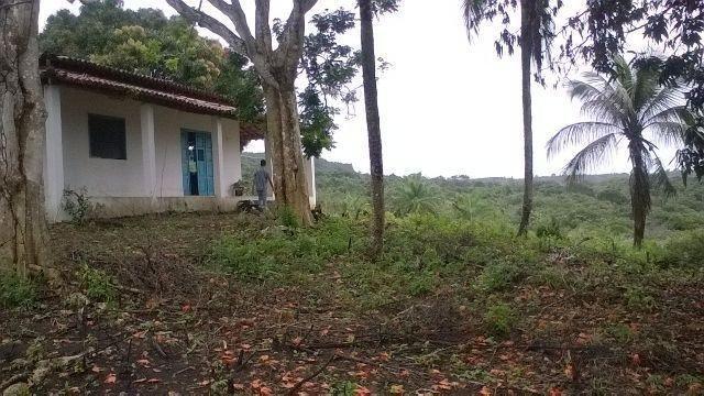 Vendo fazenda em Araçás ba - Foto 8